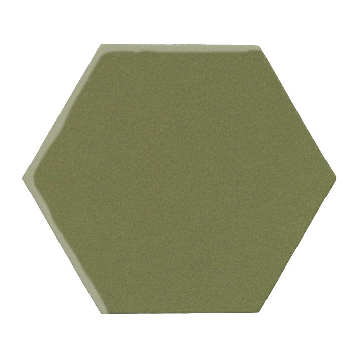 12x12 Monrovia Hexagon Kelp 5615c