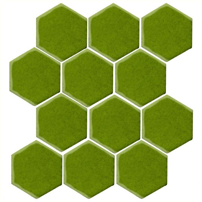 4x4 Monrovia Hexagon Jalapeno 7741c