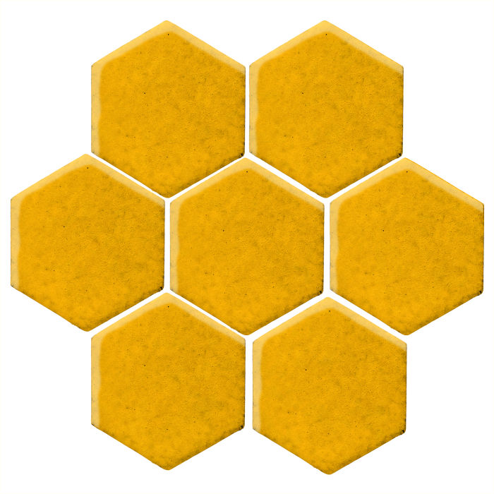 6x6 Monrovia Hexagon Sunflower 1225c