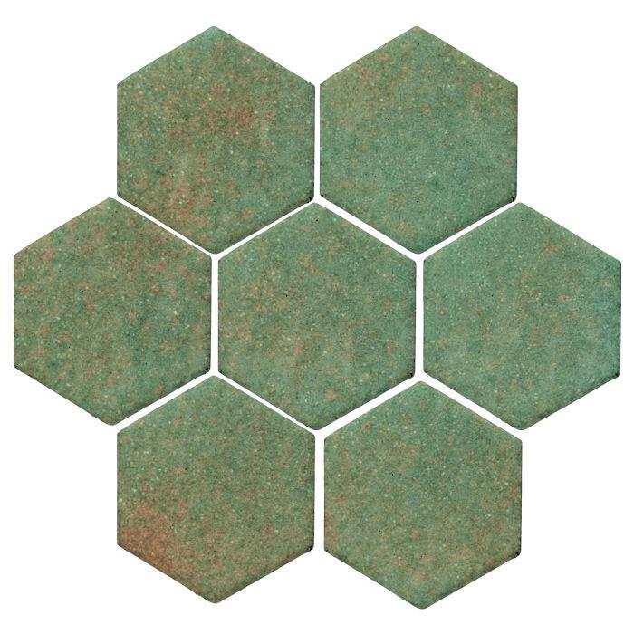 MON-HEX-6X6-TURT-STD