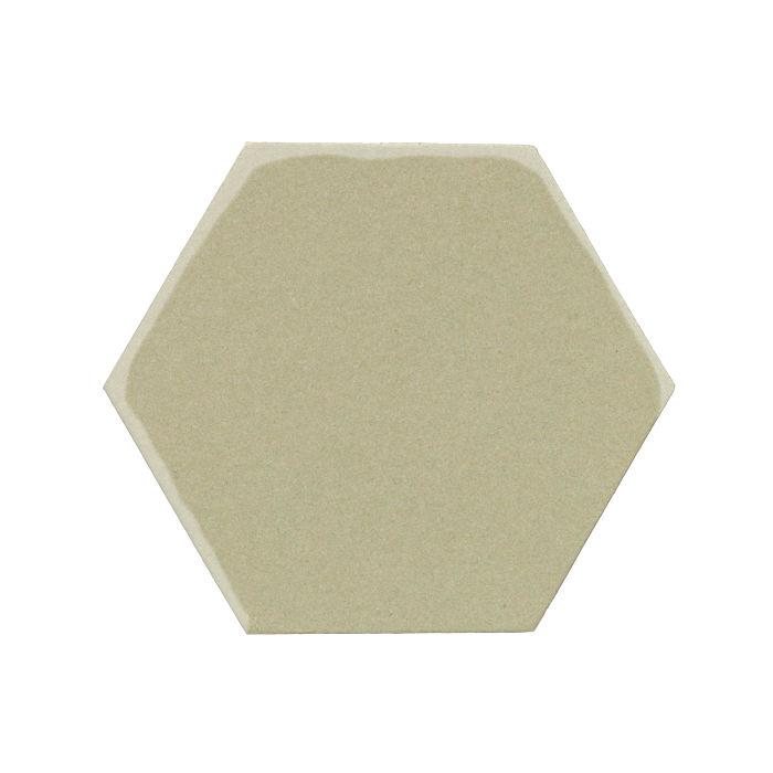 8x8 Monrovia Hexagon Aloe Vera 5645c