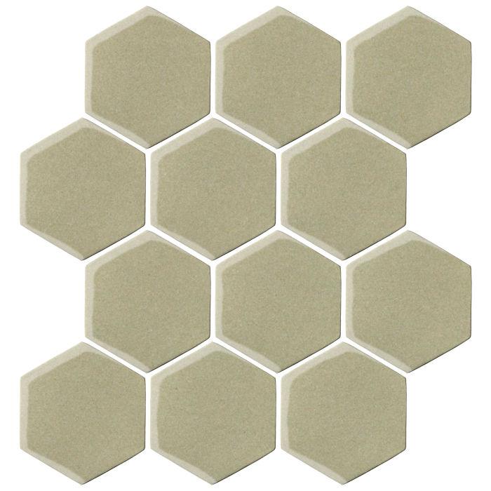 4x4 Oleson Hexagon Aloe Vera 5645c
