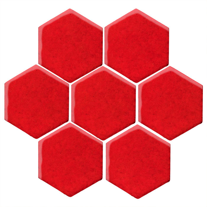 6x6 Studio Field Hexagon Cherry Tomato 7621c