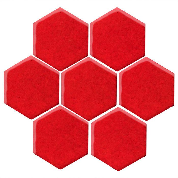 6x6 Studio Field Hexagon Cherry Tomato 7621c