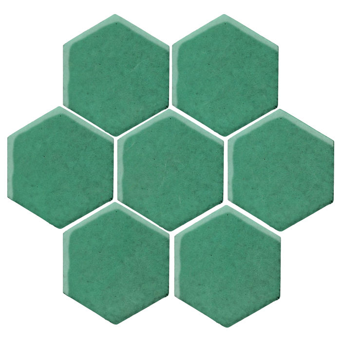 6x6 Studio Field Hexagon Kale 7723c