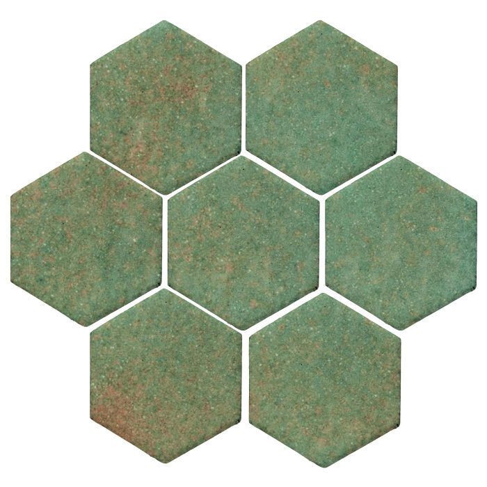 6x6 Studio Field Hexagon Turtle 563u