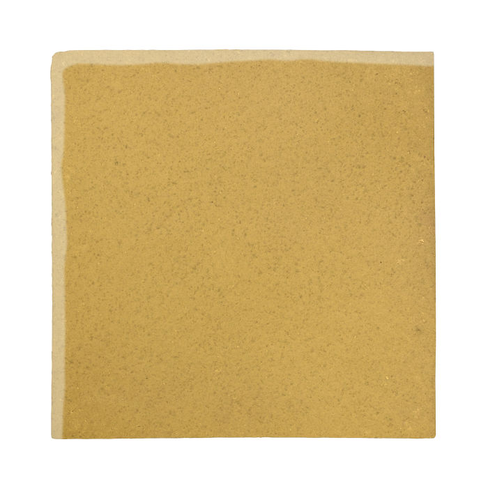 12x12 Studio Field Gold Rush