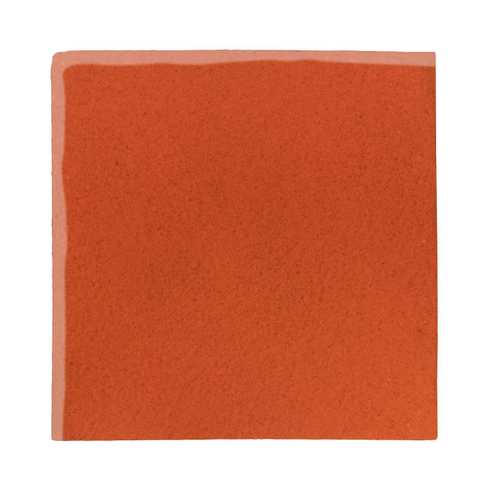 12x12 Studio Field Hazard Orange