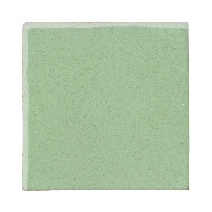 12x12 Studio Field Peppermint
