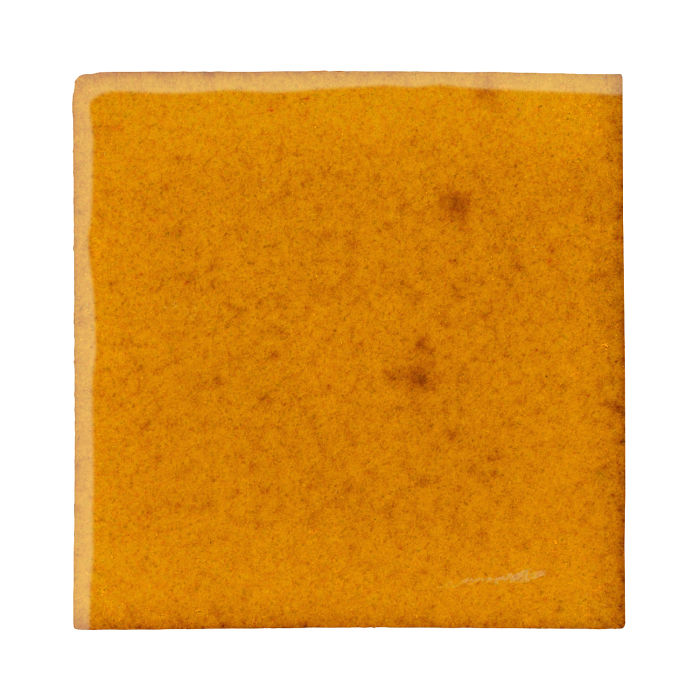 8x8 Studio Field Cadmium Yellow