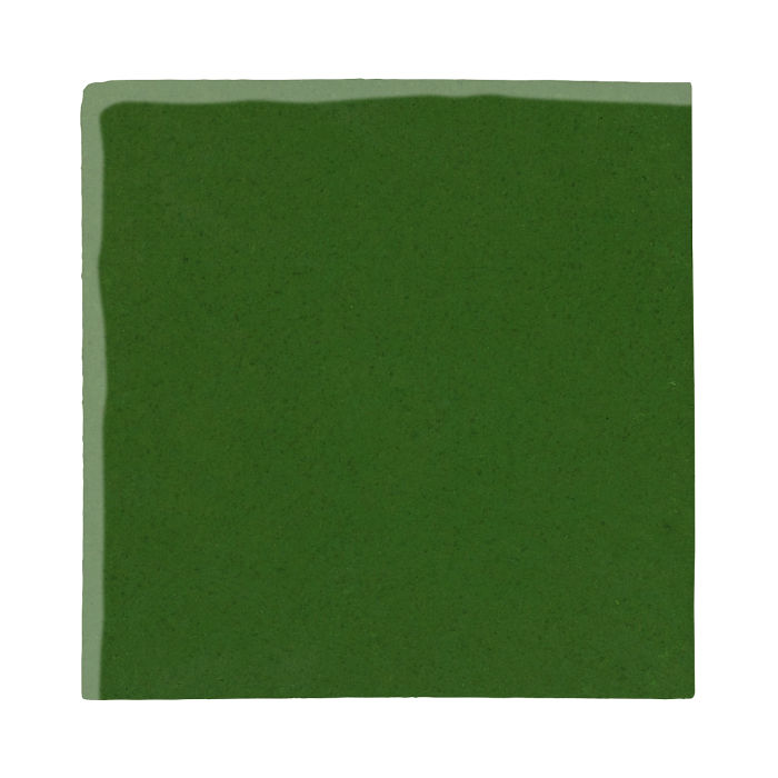 8x8 Studio Field Lucky Green 7734c