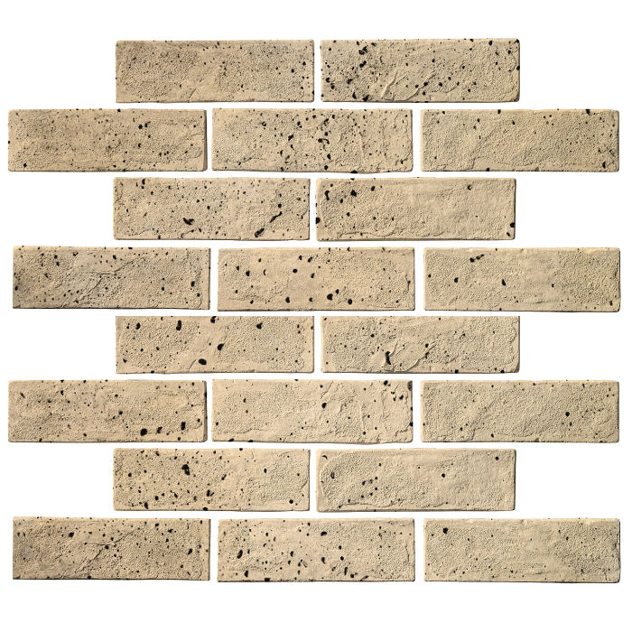 2x8 Standard Bone Travertine